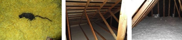 Attic and Crawl Space Insulation Services - Seattle, WA - Croach