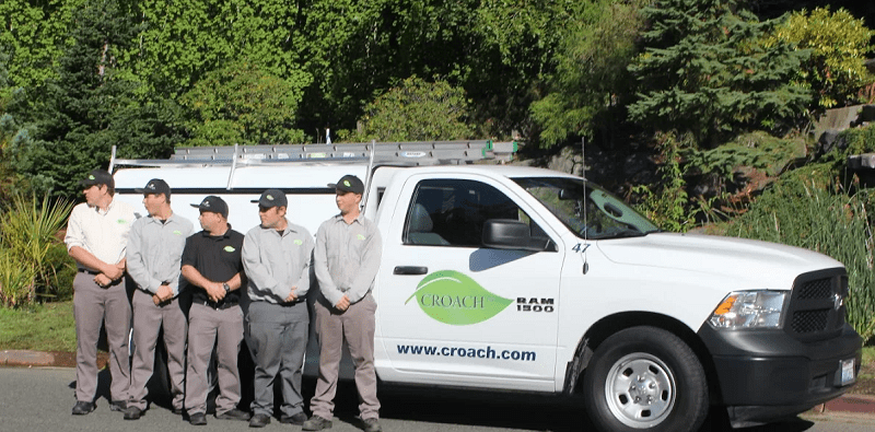 Croach Pest Control Technicians - Kirkland, Washington